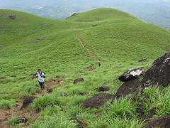 Chembra Peak trek